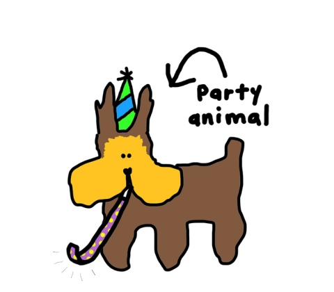 einstein-7-birthday-party-animal