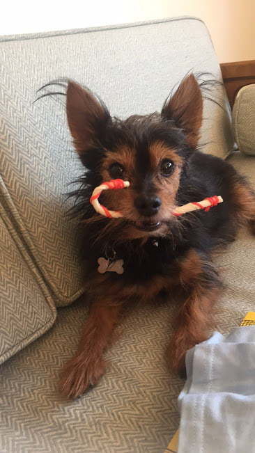 candy-cane-mouth