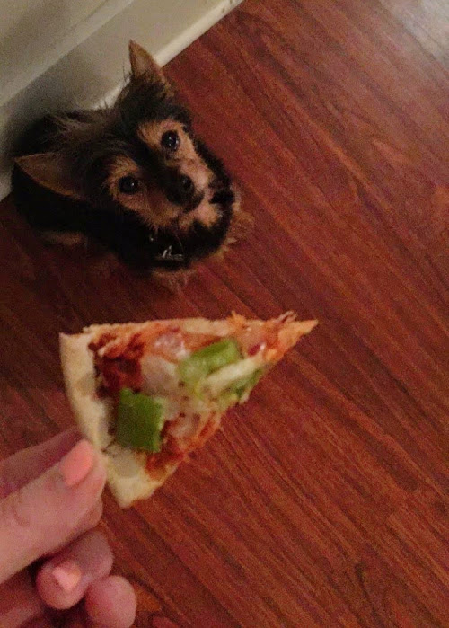 tiny-pizza